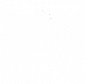 preserving the unique history of petaluma and providing educational and cultural services to the community